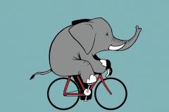 Elefante en bici