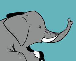 Elefante en bici, ilustración para camisetas.